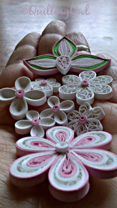 Quilled flowers ...:)