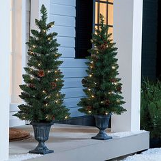 Set Of Two 3.5' Pre-Lit Urn Christmas Trees With Pinecones & Berries; $35 Big Lots