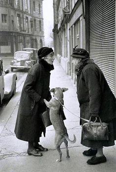 Place Dauphine, Paris 1952 • Henri Cartier-Bresson
