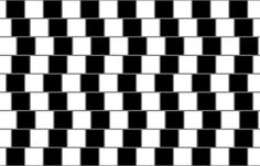 The Best Optical Illusion Video You'll See to End Your Week and Head into the Weekend (Your Eyes Are Stupid)