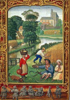The Harvest in August, Add. 24098 f.25v, 1520-1530, Simon Bening, Flemish
