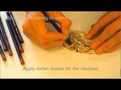 Andy Skinner derwent Inktense Pencils - a short video with text comments.  I adore these pencils!  And the artist uses my water-brush to complete the work.