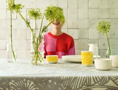Marimekko's spring/summer 2014 interior decoration collection.