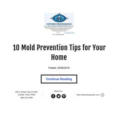 10 Mold Prevention Tips for Your Home