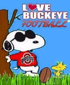 Buckeyes Football, Ohio State Football, Ohio State Buckeyes, College Football, Ohio State Logo, Ohio State University, Ohio State Crafts, Buckeye Crafts, Charlie Brown And Snoopy