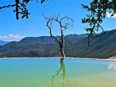 Infinity pool at Hierve el Agua