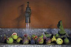 Adam & Eve of Figs   Babylonstoren Fig Fruit, Fruit Trees, Growing Fig Trees, Fig Varieties, Green Fig, Red Skin, Fresh Figs, Farm Shop, Gardens