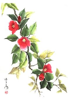 Japanese Watercolor, Sumi Ink, Camellia, Watercolour Painting, Paper Art, Paintings, Artwork, Cotton, Papercraft