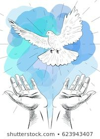 Sketch of hands let go dove of the world. Symbol of peace. Illustration of freedom and world without war. Let It Go, Diving World, Hand Symbols, Hand Sketch, Nature Tattoos, Moose Art, Royalty Free Stock Photos, Drawings, Illustration