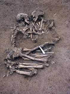 The Lovers of Mantua - 6000 year old bones of 2 lovers from the Neolithic Era. Some believe they died embracing each other on a freezing night while others think they were simply buried that way. Pretty romantic either way!