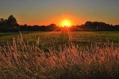 Sunset Color Palette, Sunset Colors, Tumblr Ocean, Eclipse Solar, Grass Field, Good Morning Sunshine, Blitz, Sunset Pictures, Sunset Images