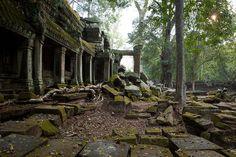 Ta Prohm Temple- Cambodia