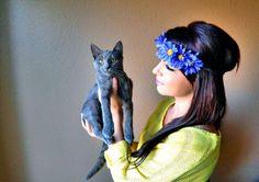 #flowerheadbands #daisyheadband #daisies #hippieheadband #festivals #raves #blueflowers #bluedaisies #flowergirls #bridal
