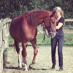 Shoulder-in - When the horse feels supple on the inside rein, the outside rein can be used to ask the horse to bring its shoulders inwards.  In the exercise shoulder-in, the weight of the horse is placed in front of the direction of movement of the inside hind leg, thus making it carry more weight.   The wall prevents the outside hind leg from falling out.