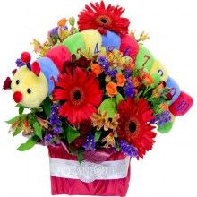 Scooter baby flowers with a colourful caterpillar http://www.flowersbytina.com.au/shoppingcart/products/scooter.html
