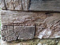 Wood, Great Dixter MM
