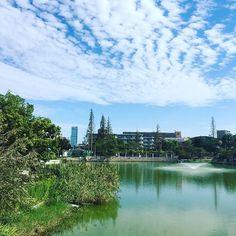 #大阪 #万代池 #あべのハルカス River, Instagram, Outdoor, Outdoors, Outdoor Games, The Great Outdoors, Rivers