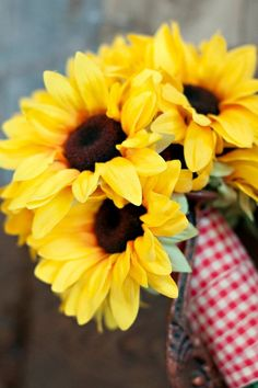 sunflower gingham Gingham Wedding, Big Day, Summertime, Wedding Day, Bloom, Flowers, Plants, Picnic, Inspire