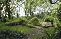 Lost Gardens of Heligan - Mevagissey, Cornwall