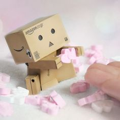 Love with box kid