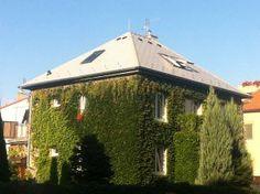 Rekonstrukce šikmé střechy #strechy