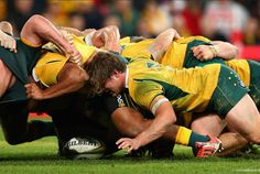 Michael Hooper of the Wallabies and team mates pack down a scrum during The Rugby Championship match between the Australian Wallabies and the South Africa Springboks at Suncorp Stadium on July 2015 in Brisbane, Australia Michael Hooper, Rugby Championship, World Rugby, Super Rugby, Six Nations, Rugby News, Brisbane Australia, Sports, South Africa