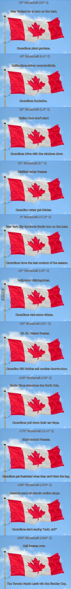 Funny pictures about Official Canadian temperature chart. Oh, and cool pics about Official Canadian temperature chart. Also, Official Canadian temperature chart. Canadian Things, I Am Canadian, Canadian Humour, Canadian Facts, Funny Pins, Funny Memes, Jokes, Funny Videos, Funny Stuff