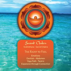 2nd #Chakra ~ The Spirit of Water: The Right to Feel.- celebrated and pinned by www.omved.com