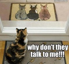 They don't talk to me ...:-((
