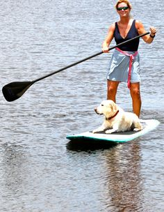 Stand up paddle board with dog | Reserve your paddle board at Fort Lauderdale's Official Paddle ...