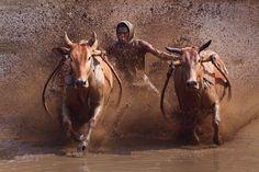 Photograph Untitled by Rahmat Hidayat on 500px