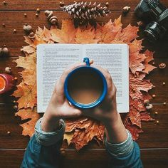 Flatlay Inspiration · via Custom Scene · Very Autumny! Make a simple scene into Autumn using leaves, pinecones and a candle. Flat Lay Photography, Autumn Photography, Book Photography, Photography Classes, Autumn Aesthetic Photography, Photography Hashtags, Fashion Photography, Christmas Photography, Photography Lighting