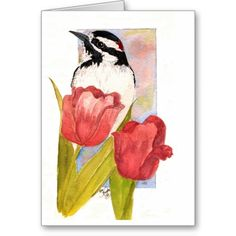 Hairy Woodpecker and Tulips card
