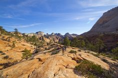 Observation Point: Beat the Crowds in Zion Canyon