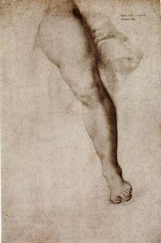 Agnolo Bronzino (1503-1572), Study of a Left Leg and Drapery, c. 1545-1550. Black chalk - 39.1 x 25.4 cm. New York, The Metropolitan Museum of Art