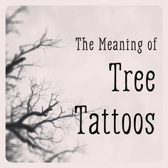 If you're thinking about getting a tree tattoo, here are some interpretations of what they mean and links to videos and resources for images to use to help jump-start your imagination.