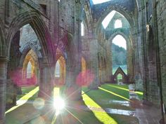 Tintern Abbey, Wales. Totally magical photo! #tinternabbey #cadw