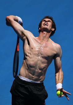 Andy Murray @JugamosTenis #tennis Tennis Tournaments, Tennis Players, Ideal Male Body, Fernando Verdasco, Indoor Tennis, Male Pose Reference, Sport Tennis, Soccer, Andy Murray