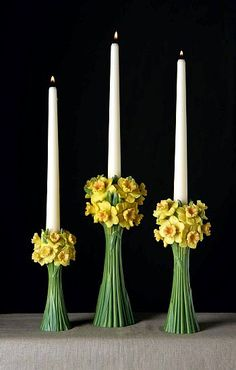 Jonquils Candlesticks Set