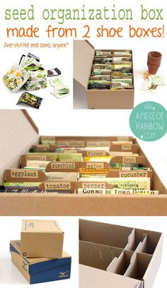 Make A Seed box. I'm enough of a hoarder of seeds to see that I could really use this. I would use a plastic box though, and keep it in the fridge. Seed Storage, Diy Storage, Storage Ideas, Makeup Storage, Storage Boxes, Organic Gardening, Gardening Tips, Allotment Gardening, Organic Farming
