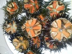 http://www.ditestaedigola.com/le-spine-e-la-gola-i-ricci-di-mare-tra-legge-etica-alimentare-e-degustazione/