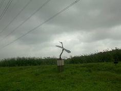 Opvliegende reiger, De Oude Kene, Hoogeveen