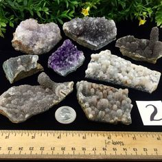 Stalactitic Amethyst Parcel #2 Rio Grande du Sol Minas Gerais Brazil $55  Buy Direct from Gem Shows Private Collections and our Massive Inventory! Wholesale/ Retail. Check our FB Group linked in our Bio for much more.  #amethyst #wholesale #crystal #crystals #mineral #minerals #crystallove #gemstones #metaphysical #crystalhealing #geology #gemstone #gems #mineralphotography #gemoftheday #gemsofig #coloradolove #holistichealing #crystalporn #geologyporn #mineralporn #Denver #ballin #heady…