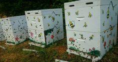 Ορεινή Μέλισσα: Η γυναίκα που έκανε τη μελισσοκομία επάγγελμα ζωής! Τα μυστικά της δεν τα περιμέναμε...