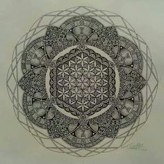 Flower of life - sacred geometry - dna - lotus