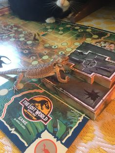 Flash taking out the helicopter pad oh no! No way off the island Bearded Dragon, Poker Table, Dragons, Island, Home Decor, Block Island, Homemade Home Decor, Poker Table Top, Kite