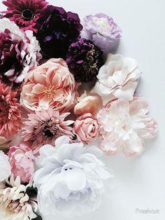 flowers background iphone 'Flower Lover ll' Fotodruck von Freshcut