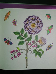 Coloring Page From Secret Garden By Johanna Basford Prismacolor Softcore Pencils Super Doddle Gel