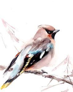 Waxwing Bird Watercolor Painting Art Print, Watercolour Wall Art, Bird Art