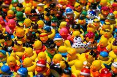 Population by tourtrophy, via Flickr